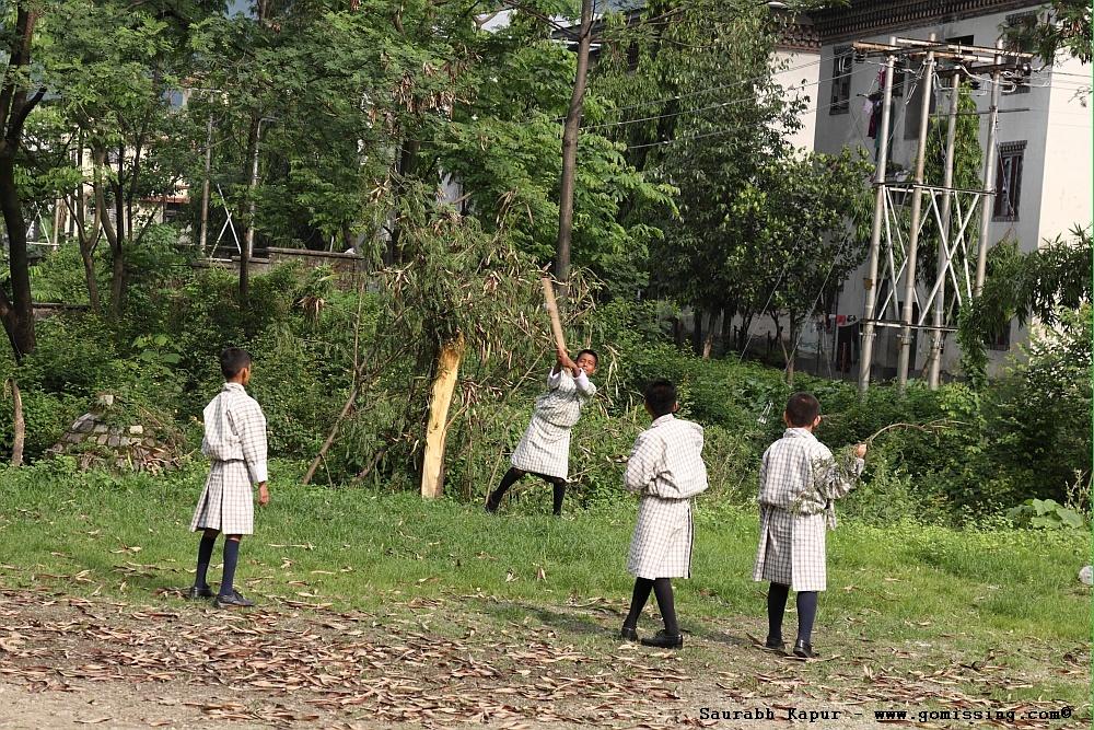 Cricket outside school