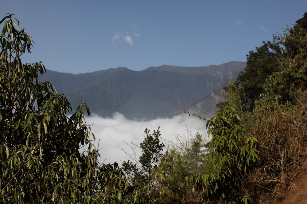 Clouds cover over the valley - Trek to Taksang