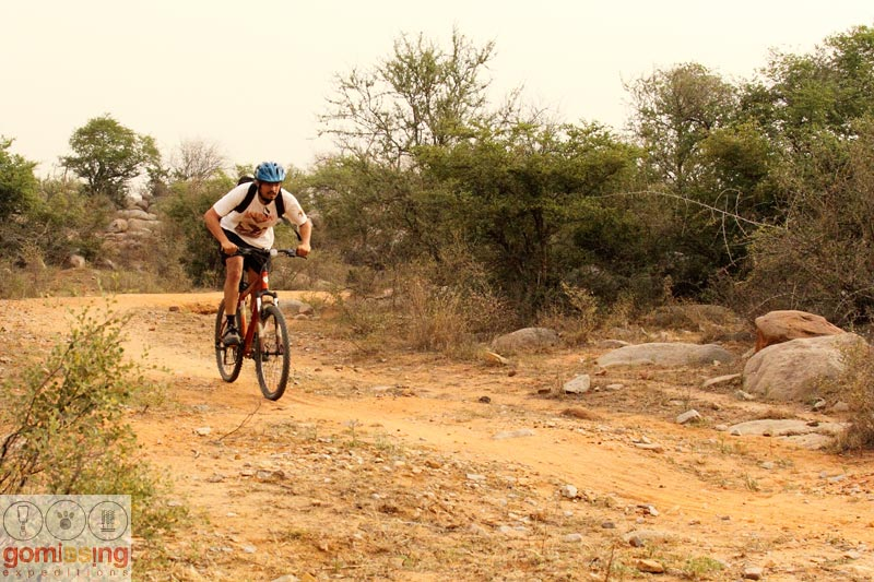 Cycling in asola wildlife sanctuary