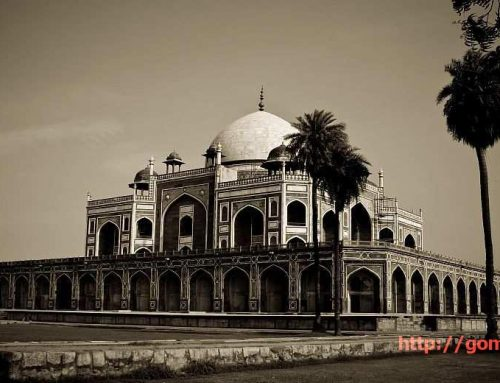 8 awesome and free things to do in Delhi