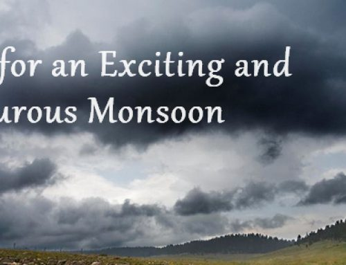 8 Ideas for an Exciting and Adventurous Monsoon
