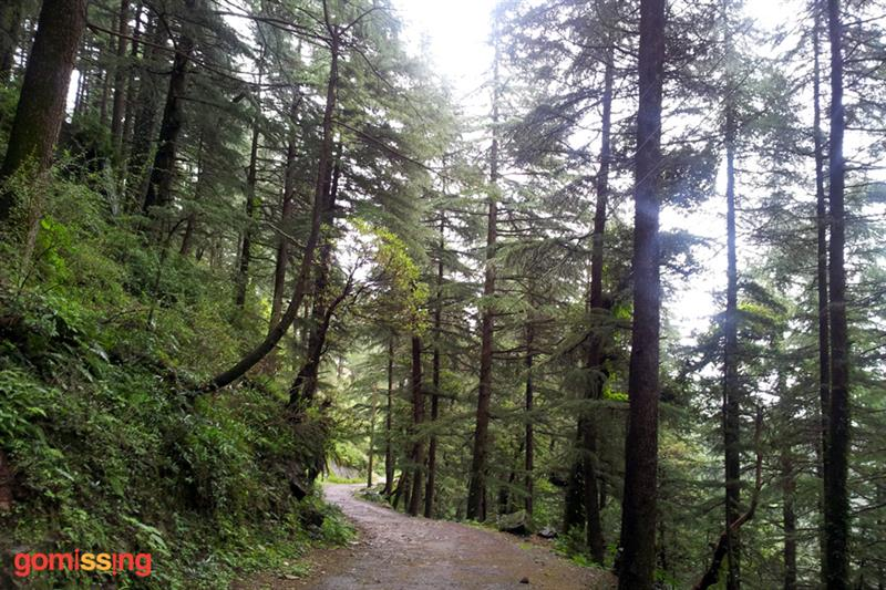 Hiking to Triund