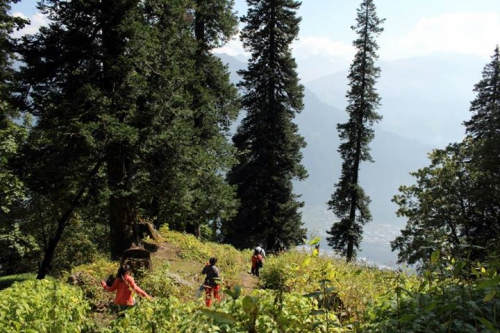 Trekking back to Manali