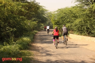 Cycling through Najafgarh forest area