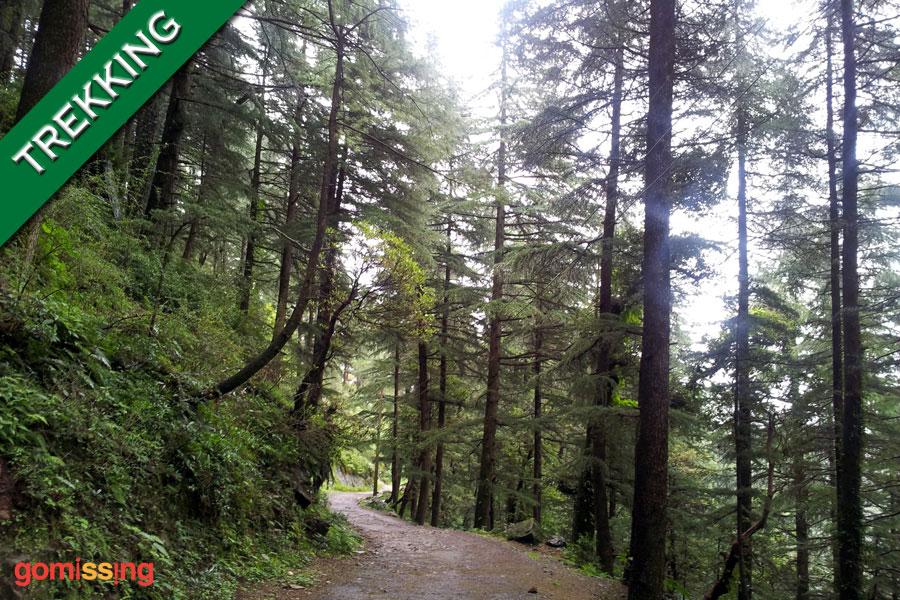 Trek to Triund Dharamshala