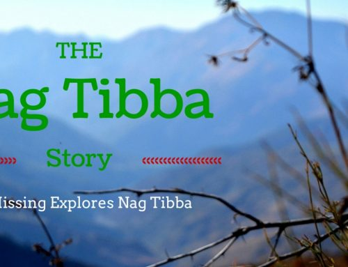 The Nag Tibba Story