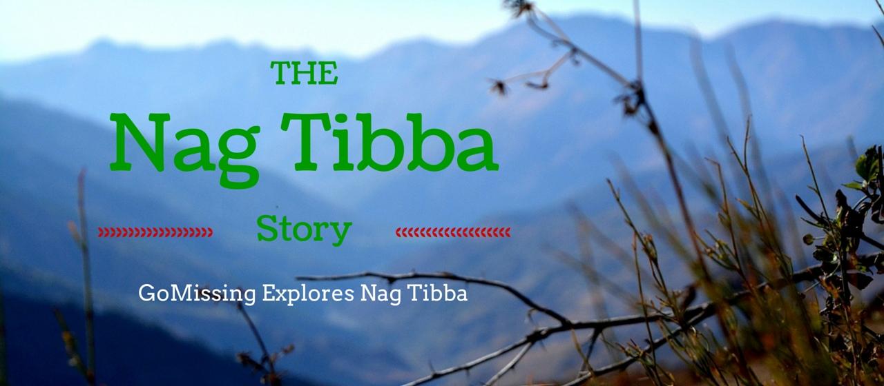 Nag Tibba Cover