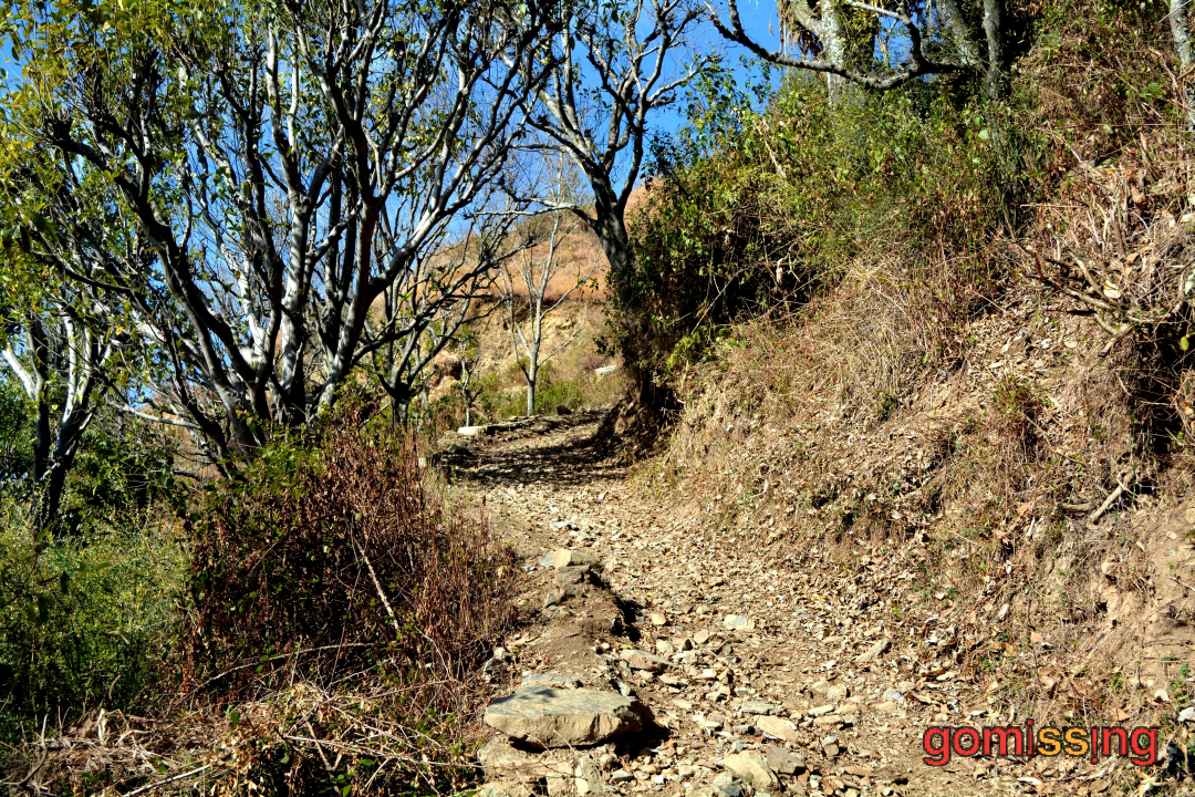 Rocky Trek Trail from Pantwari