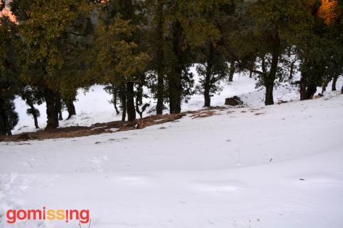 Snow covered Nag Tibba trail
