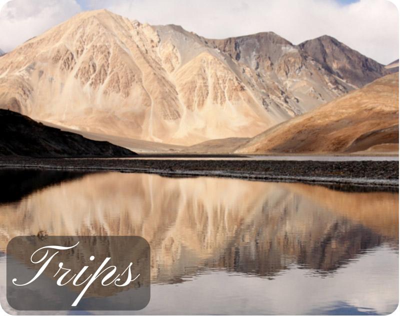 Ladakh-Trip