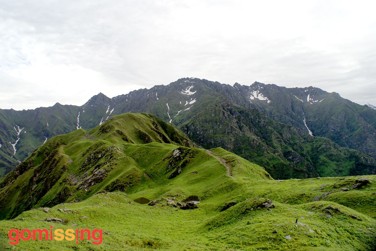 rupin Supin trek - Lush meadows