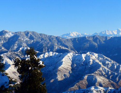 A trail less traversed: Trek to Nag Tibba