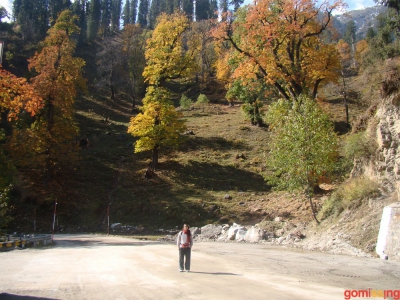 Austen's english scapes near himachal's beas kund