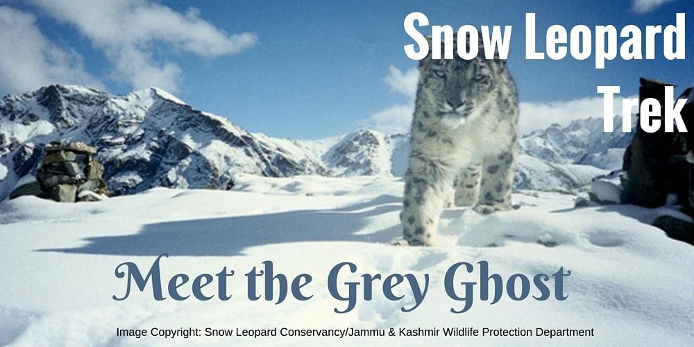 Snow Leopard Expedition, Spiti, Himachal Pradesh