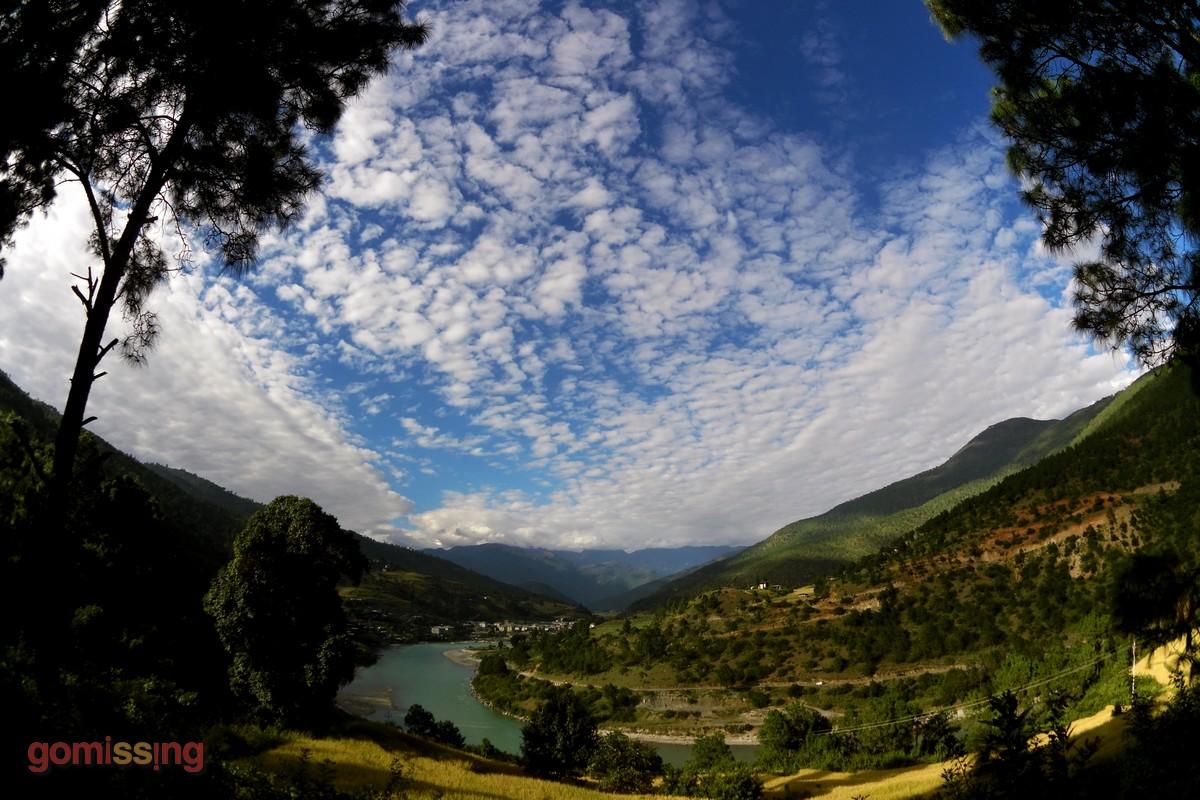 Bhutan Surreal