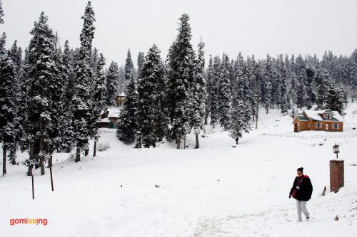 Walking in the snow - Gulmarg Golf Club area