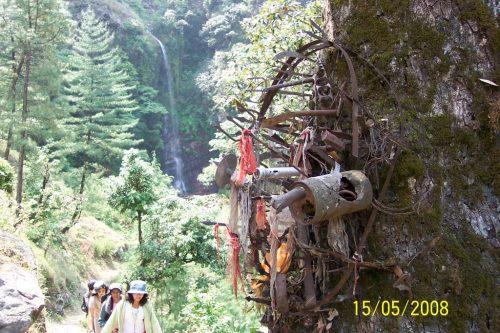 Trekking in Sai Ropa