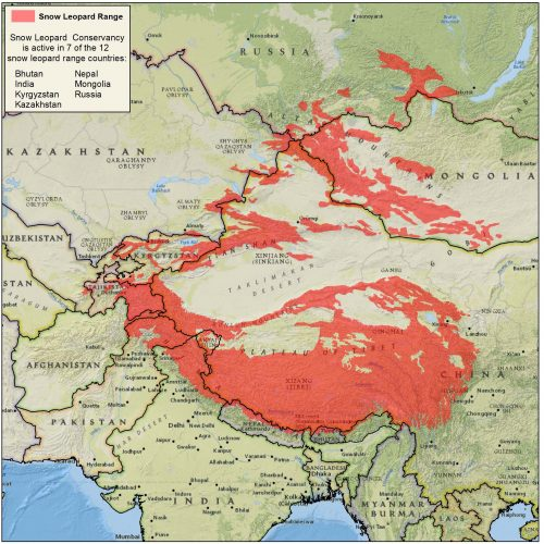 Snow Leopard Map: where are they found in Central Asia