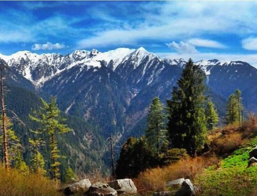 11 Reasons Why You Have To Visit Tirthan This Season